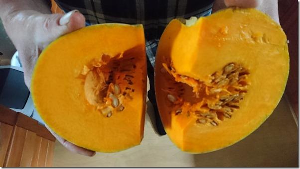 Pumpkins, pumpkins, pumpkins…..